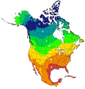 Regions used to assign birds to latitudinal bands in the Ogden et al. (2015) study. The results indicated that up to 70% of birds carrying ticks could bring them north of their capture locations (into bands C, D, and E), and up to 17% could transport ticks further into the boreal region of eastern Canada (bands D and E). This map shows how far north these ticks are being transported. Adapted from Cohen et al., 2016, Journal of Environmental Microbiology Vol. 3 page 322-350.