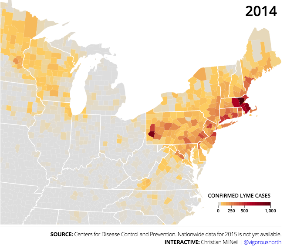 lyme disease northeast