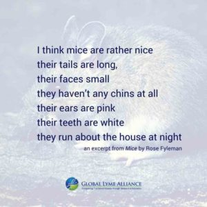 blog_mayla_white footed mouse_quote