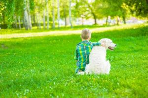 boy dog ticks grass